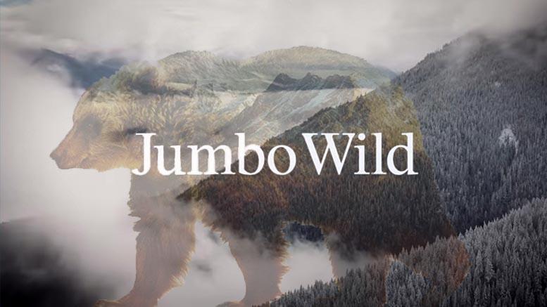 Jumbo Wild Patagonia