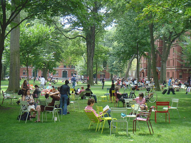 Harvard square 2 18 06 17