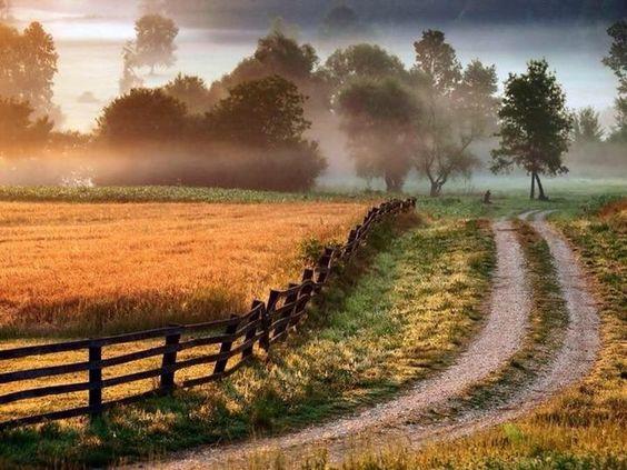 Prairies 12 09 18